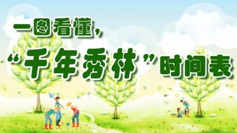 """明年将达61万亩!雄安""""千年秀林""""建设时间表来啦"""