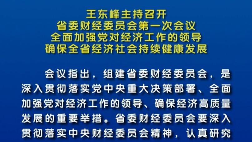 【视频】王东峰主持召开省委财经委员会第一次会议