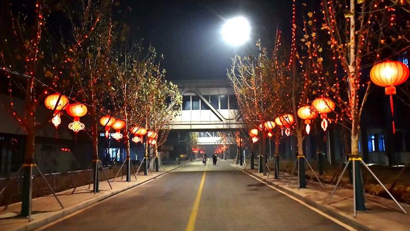 大红灯笼高高挂 市民服务中心进入腊月年味浓