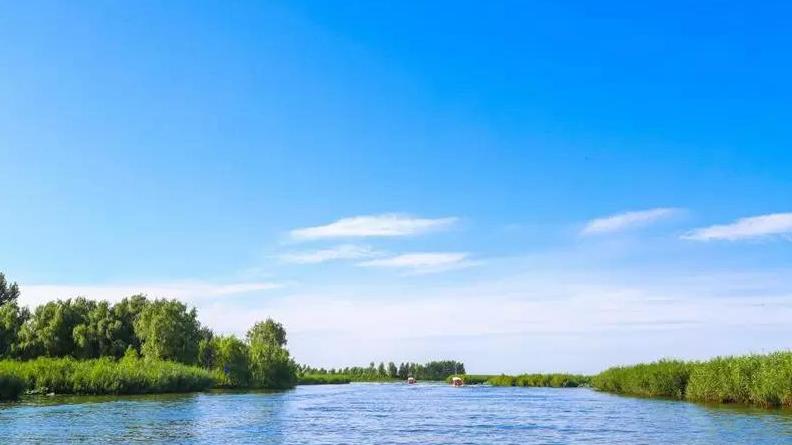 """雄安新区今年将全力打好水污染防治攻坚战 """"一源四措""""推进白洋淀水质明显改善"""