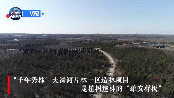 【视频】习近平:雄安发展要践行生态优先