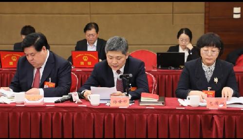 【视频】梅世彤代表:打造雄安新区便捷出海口