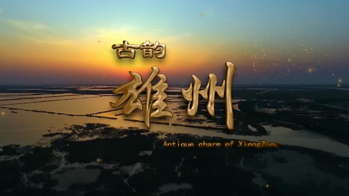 雄安·雄州文化节新闻发布会全程回顾