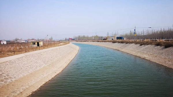 河南清丰:万亩秀林涵水源,一渠清水送雄安