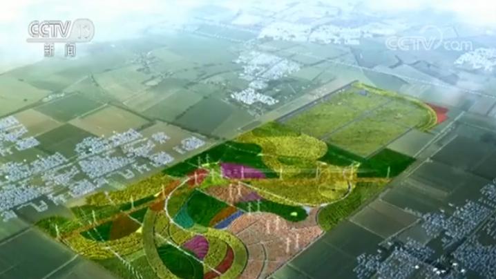 """视频丨""""千年秀林""""第二标段完成苗木栽植任务"""