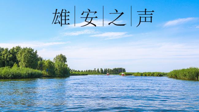 【雄安之声】20190506