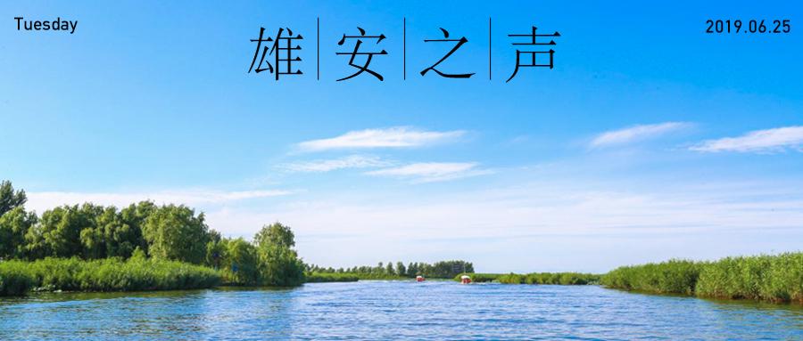 【雄安之声】20190625