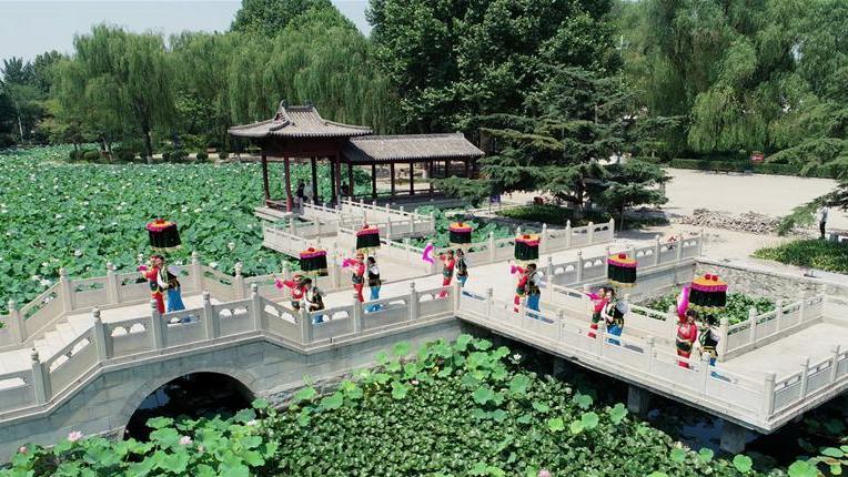 河北石家庄:晋州官伞