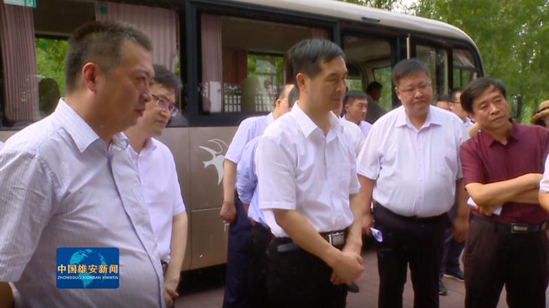 视频丨田金昌在安新县调研防汛和征迁安置工作
