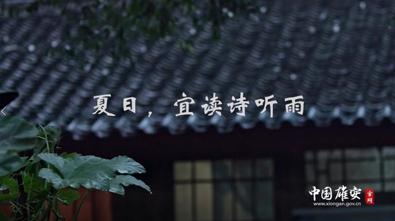 视频丨夏日,宜读诗听雨