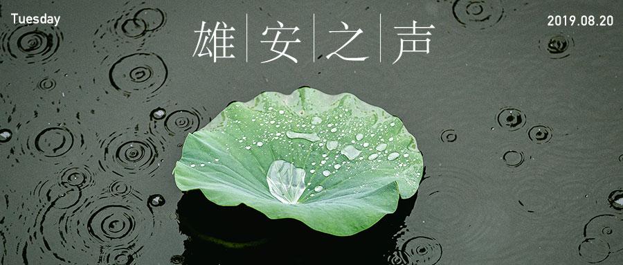 【雄安之声】20190820