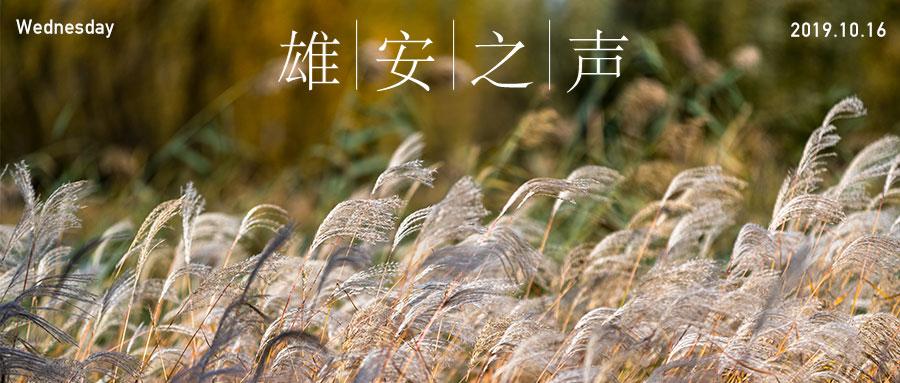 【雄安之声】20191016