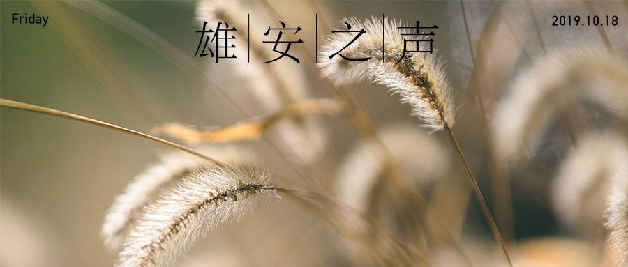 【雄安之声】20191018