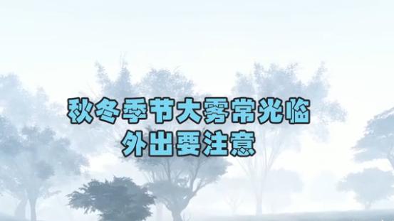 秋冬季节大雾常光临,外出要注意!