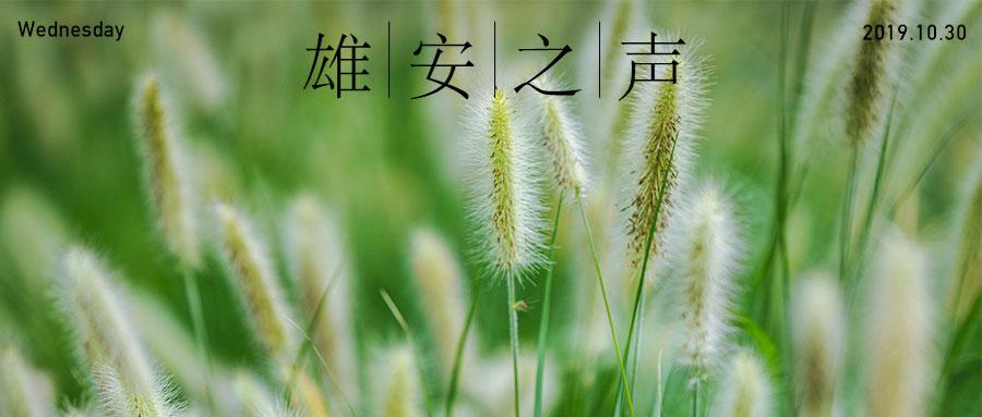 【雄安之声】20191030