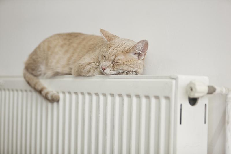 """供暖季来了 如何预防""""暖气病""""你知道吗?"""