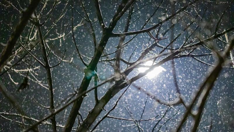 遇见·雄安丨终于等到你!雄安2019年冬的第一场雪!