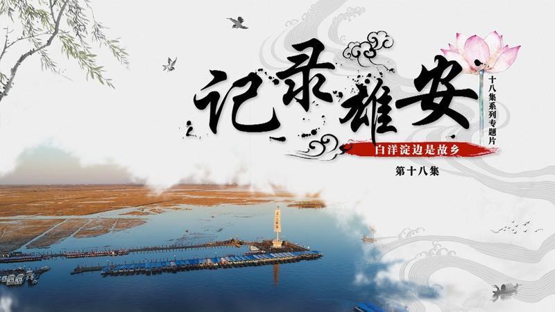 《记录雄安》第十八集:白洋淀边是故乡