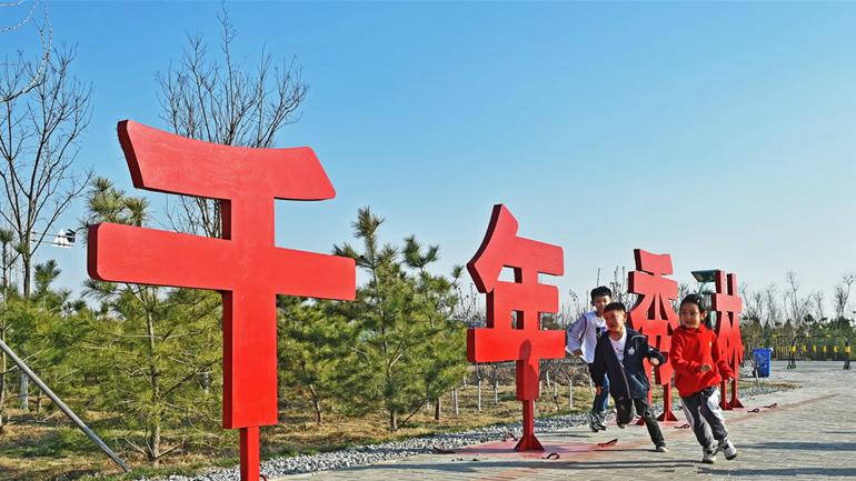 河北雄安新区:千年秀林春日好