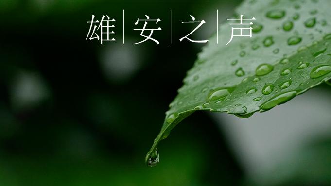 【雄安之声】20200410