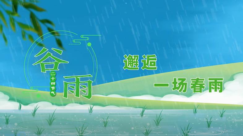 谷雨丨邂逅一场春雨