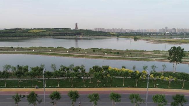 河北石家庄:滹沱河两岸建成绿色生态景观长廊