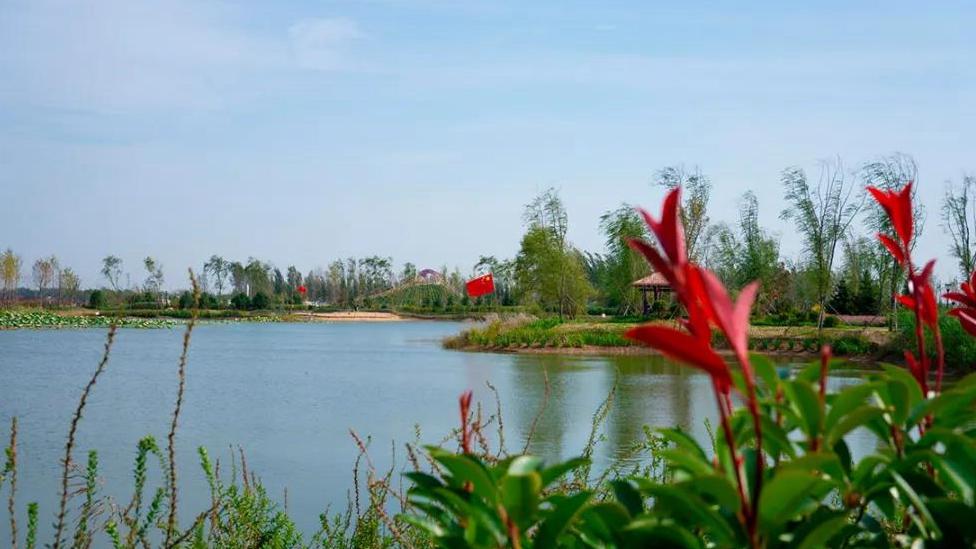 欢度国庆丨美在雄安,打卡天鹅湖公园!