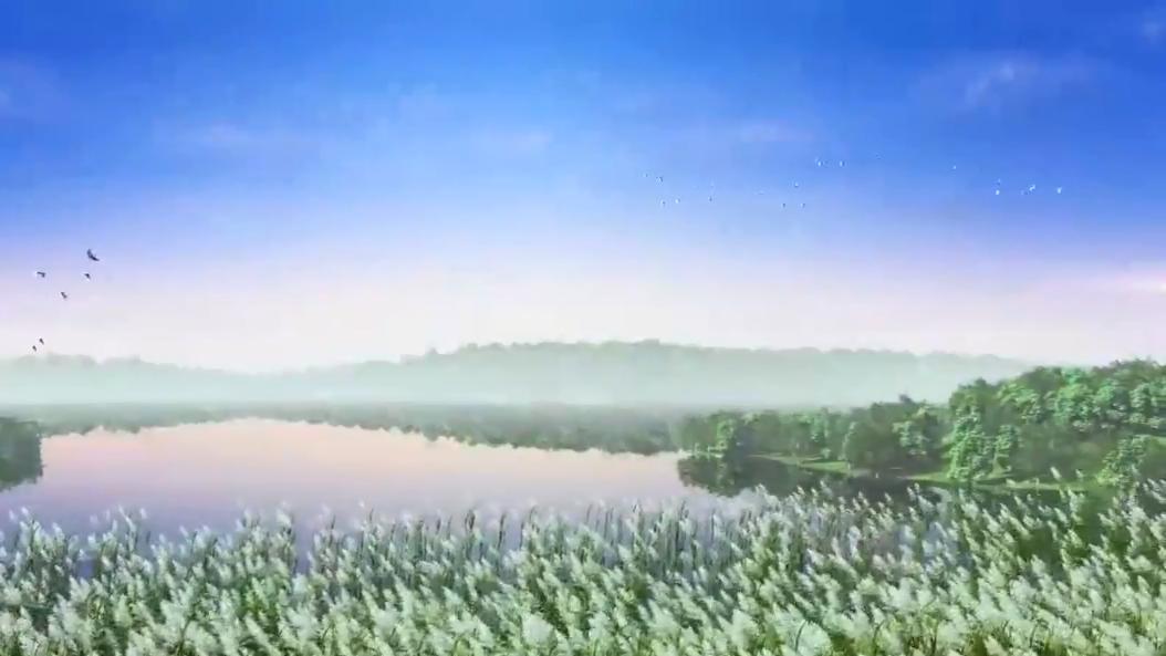 最新探访!雄安新区:府河河口湿地主体完工成效初显