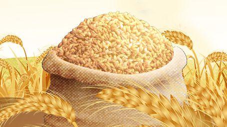 世界粮食日丨快收藏,节约粮食小妙招来啦!