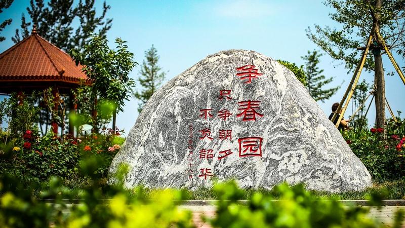 """快来看!雄县双堂乡有个""""园林绿化工程师速成班"""""""