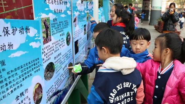 河北省下发通知打击乱捕滥猎贩卖野生动物行为