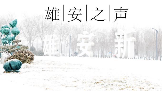 【雄安之声】20名!中国雄安集团招聘专业技术管理人员啦