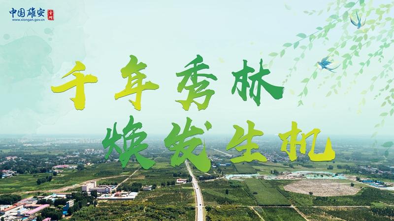 """植树节丨""""千年秀林""""焕发生机!"""