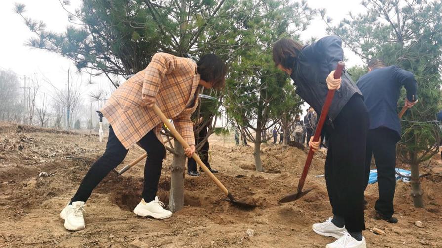 雄安新区雄县大力开展春季植树活动