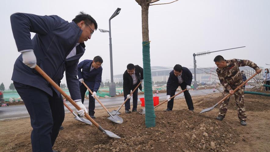 助推新区绿色发展,雄安建设者积极开展植树活动