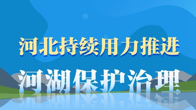 """长图丨河北持续用力推进河湖保护治理,王东峰强调六个""""强化"""""""