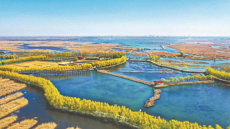 为生态雄安筑牢法治之基——《白洋淀生态环境治理和保护条例》解读