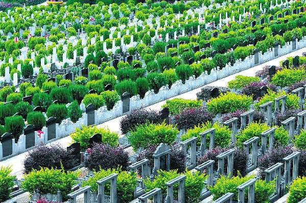首部京津冀区域协同标准《骨灰节地生态安葬规范》4月1日起实施