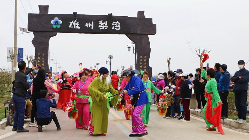 雄安雄州梨湾梨花游园会开幕