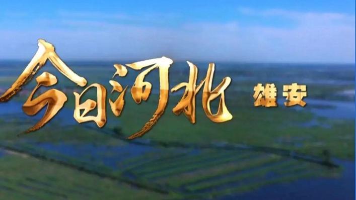 《今日河北》6月25日推出雄安篇