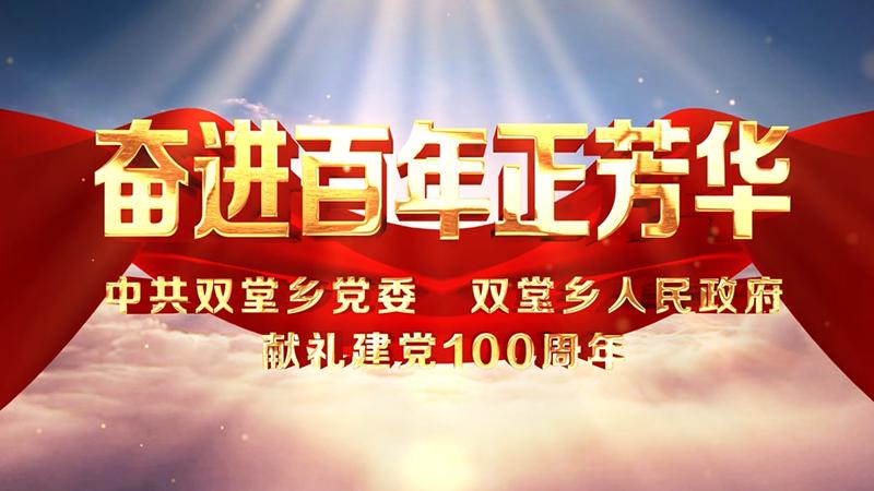 中共双堂乡党委双堂乡政府献礼建党100周年