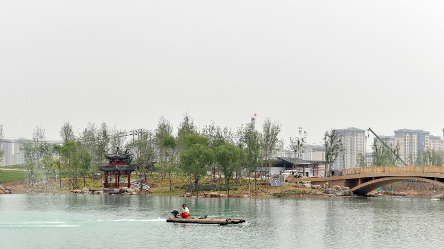 探访雄安金湖公园项目建设现场