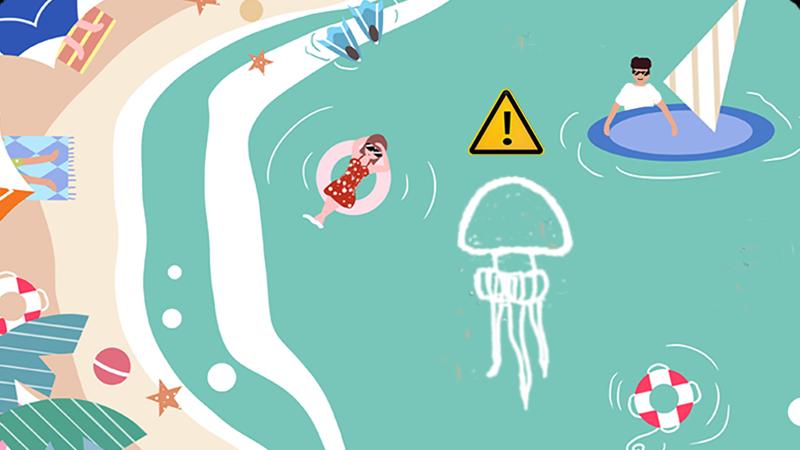 科普丨海水浴场中,海蜇蜇伤不可小视!