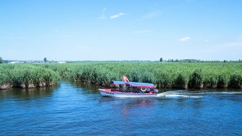 安新县文化和旅游局关于白洋淀景区恢复营业的通知