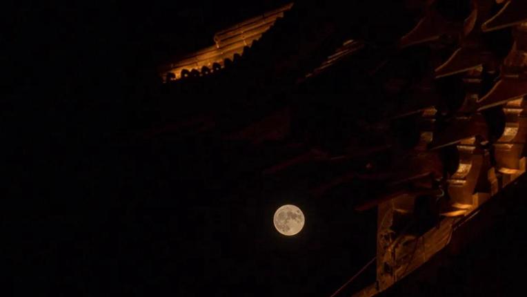 这里被月光点亮