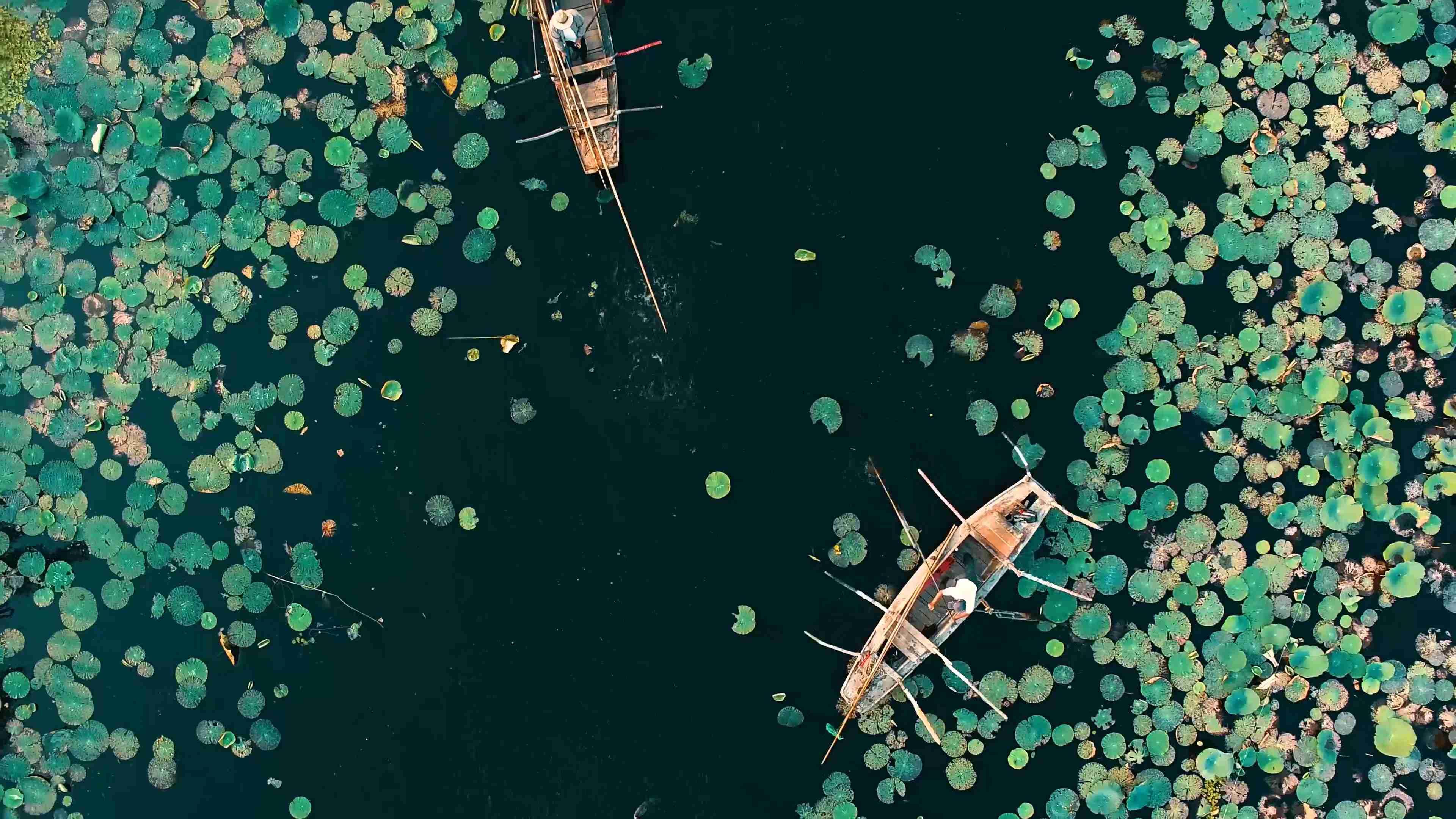 渔船水乡 白洋淀里秋韵长