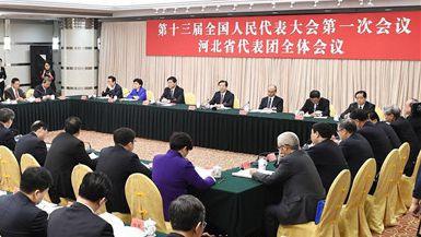 """河北代表团审议""""两高""""报告"""