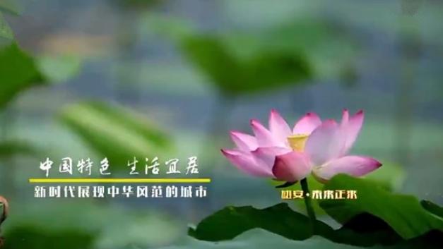 《河北雄安新区规划纲要》解读——雄安·未来正来(一)