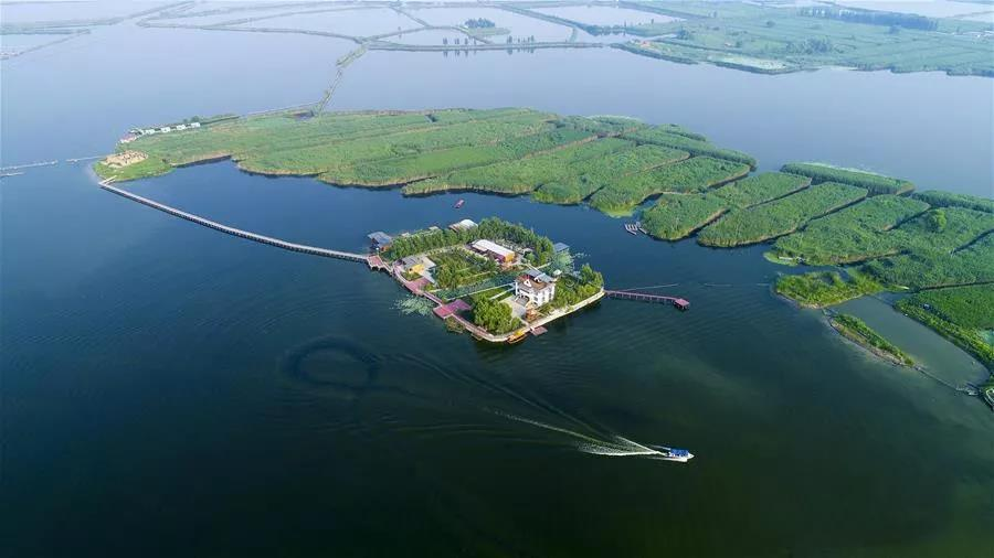 河北雄安新区将分级分区设立湖长