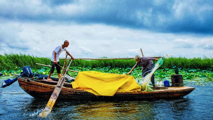 以淀为家 以渔为生:白洋淀最年长的捕鱼夫妇